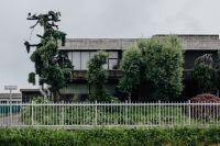 Kaboompics - Municipal greenery - modern house, trees, hedge and fence