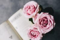 Lovely roseses and book