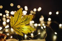 Kaboompics - Leaf, fairy lights
