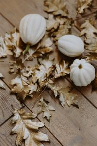 White pumpkins with golden oak leaves