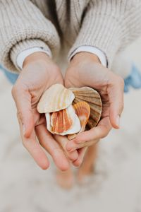 Kaboompics - A young woman on the beach is holding seashells