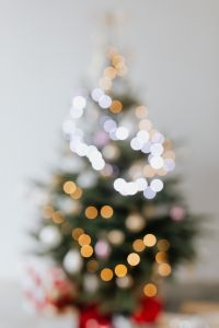 Kaboompics - Blurred Christmas Trees