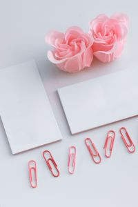 Kaboompics - Little sheets of paper with pink paper clips
