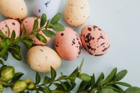 Kaboompics - Easter Eggs & Buxus - Boxtree - Boxwood